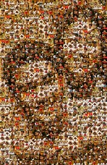 Jay & Portia Mosaic (100 Photos)