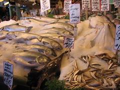 bestfish