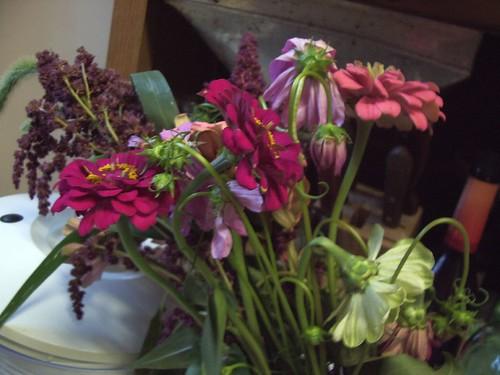 csa wk 6 flowers
