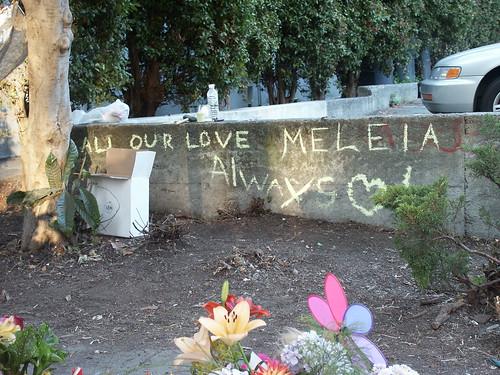 Meleia-2 - 25