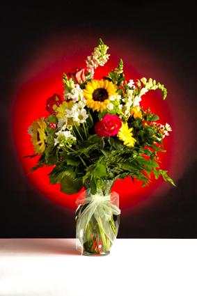 FlowersLoRes