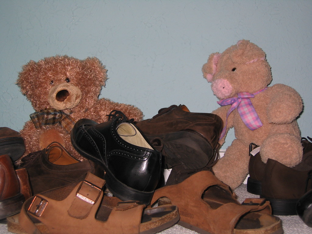 Young bears playing in shoes.