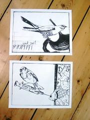 Drawings By Stephanie Black