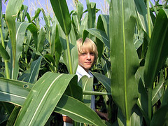 Andrew in the corn