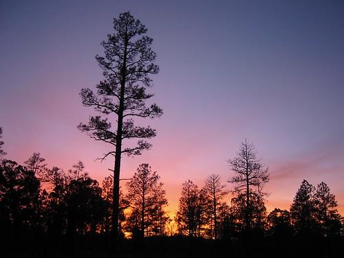 sunset showlow arizona geotagged geolat34211518 geolon110073738