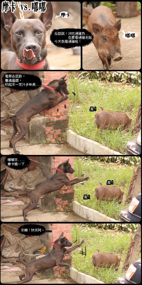 http://photos21.flickr.com/32185170_a10540c91e_o.jpg