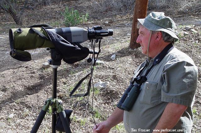 Birding in Arizona