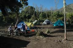 Onze tenten enzo