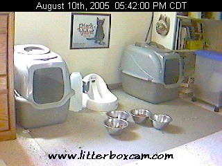 LitterboxCam