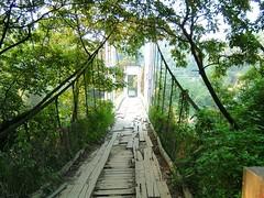 碧湖吊橋可行車