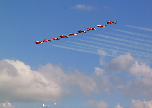Snowbirds in a Row. | by top pocket man