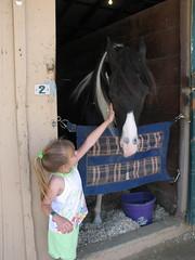 Barnyard petting