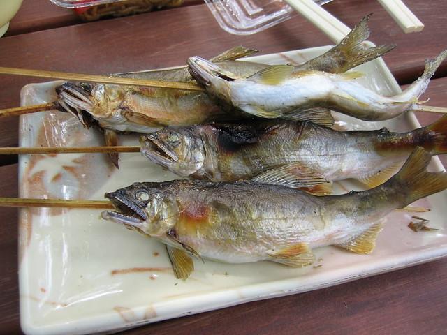 Ayu,River fish??