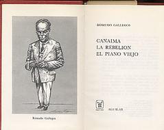 Gallegos Canaima