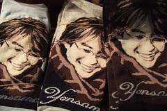 yonsama socks