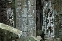 Carving_2_@_Ta_Promh,_Angkor