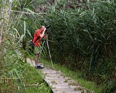 Gary photographing grass