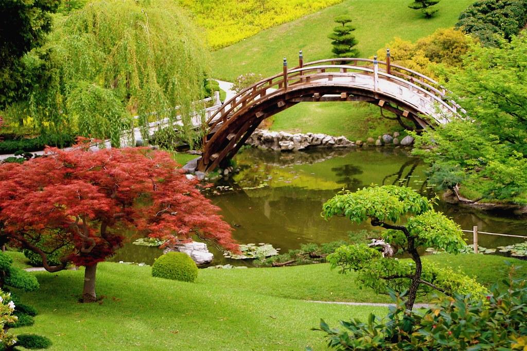 gardening landscape