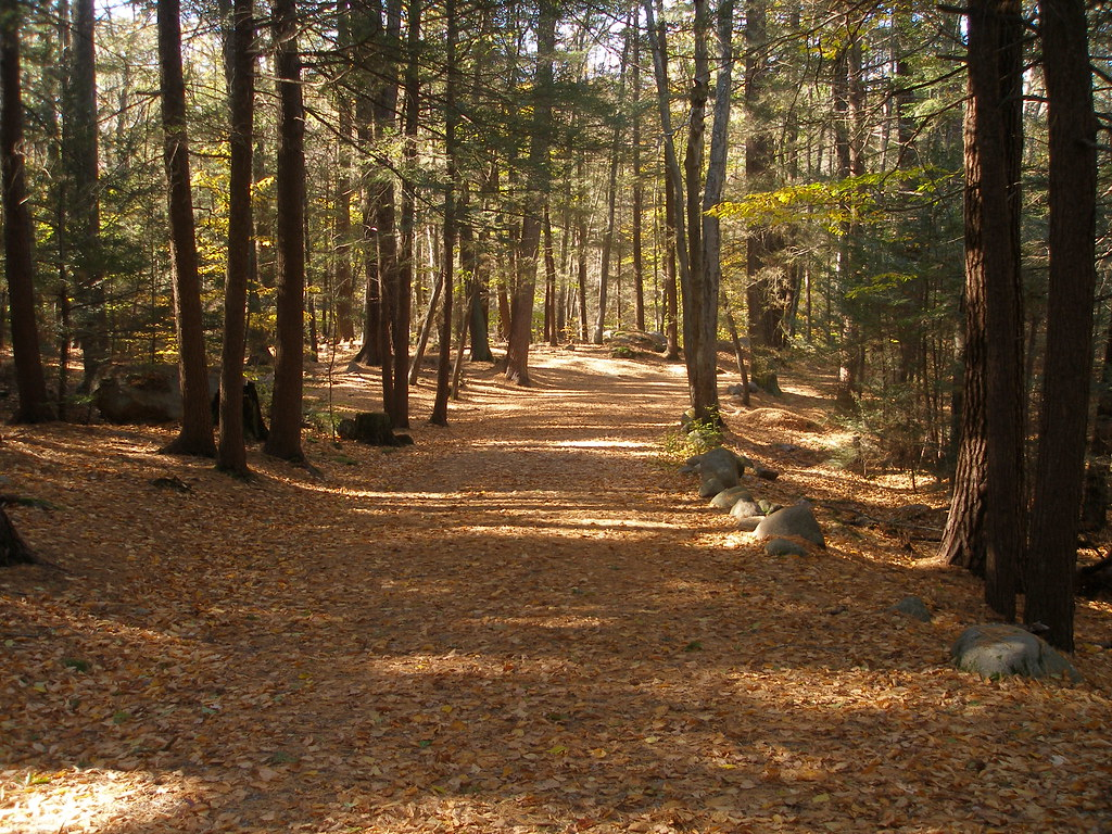 ravenswood park