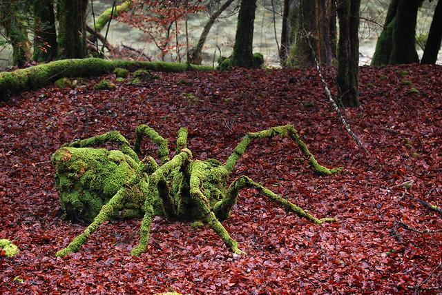 Land Art - Araignée (6 photos)