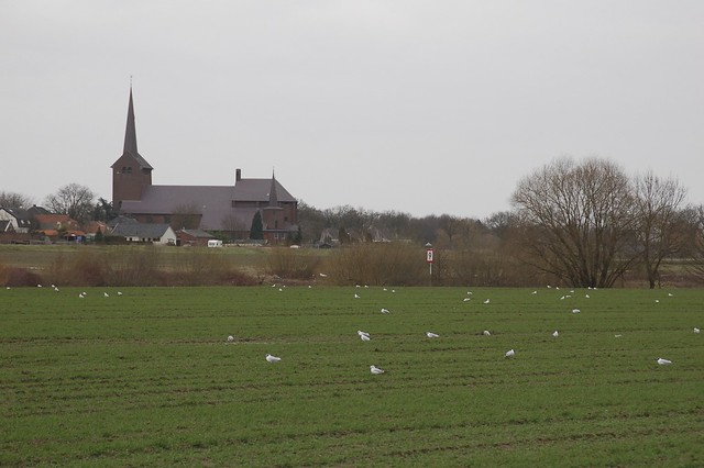 Kerk van Grubbenvorst