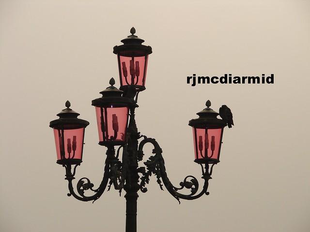 Venice pink lamps