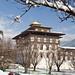 Snow in Thimphu