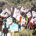 Manifestación independentista nunha propiedade de Silvio Berlusconi na illa