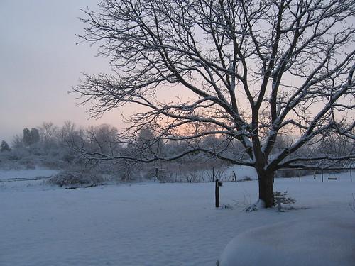 snow farm country