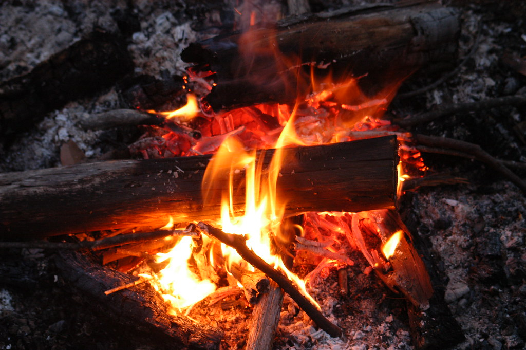 Picture of logs burning on a campfire