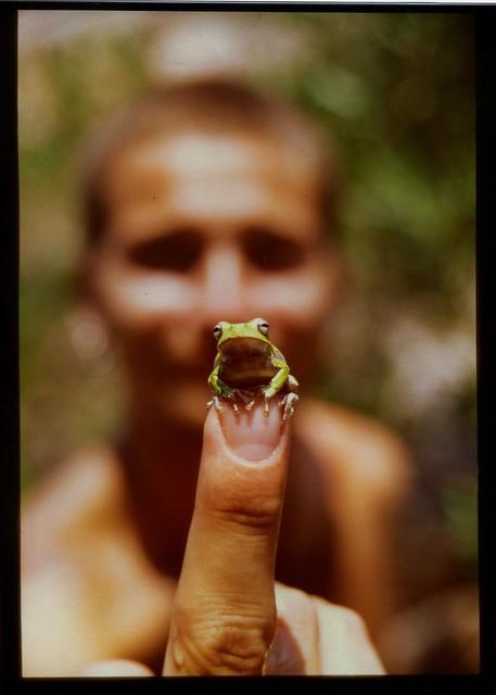 Cutest frog ever met