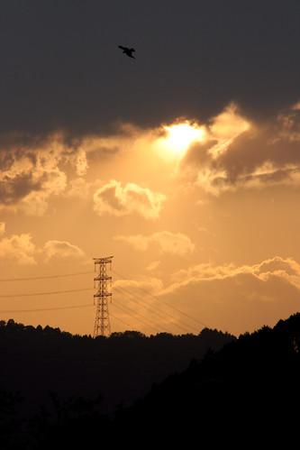 sunset sky cloud sun mountain bird tower japan geotagged tokyo powerline oume abigfave geo:lat=35784975 geo:lon=139249043