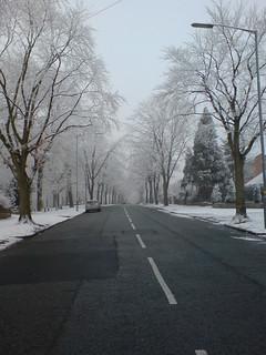 Swanshurst Lane | by leonardomorgado