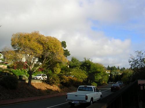 Clouds & trees | by scriptingnews