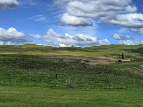 blue green history abandoned clouds landscape countryside washington may portfolio 2008 hdr rollinghills windowsxp molson okanogan seniorproject washingtonstatehistory okanoganhighlands windowsxpbackground gratuitousprocessing