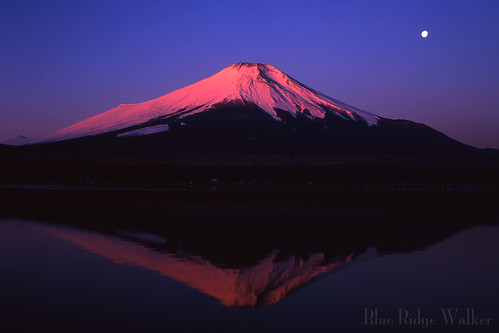 BENI FUJI(Mt.fuji,富士山)