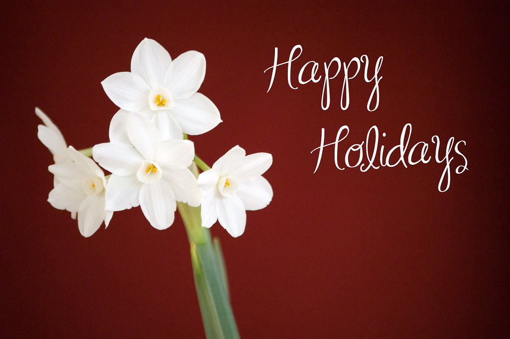 Happy Holidays And Thanks To All >> Happy Holidays Flickr Friends Thanks For All Of The Suppor