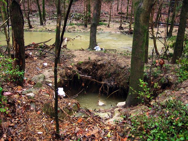Karst Feature, Ensor Sink Park, Cookeville, TN