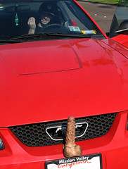 Custom Hood Ornaments >> Custom Hood Ornaments New Mustangs Come With Custom Hood O Flickr