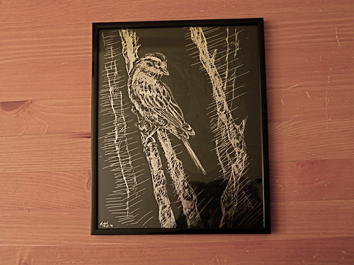 bird illustration silver table drawing crafts sparrow crosshatch scratchboard