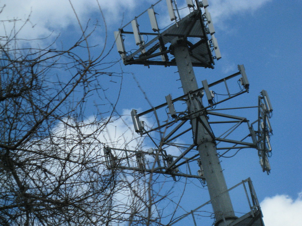 Figure 1. Image of a cellphone tower next to a wiry tree against blue sky and sparse white clouds.