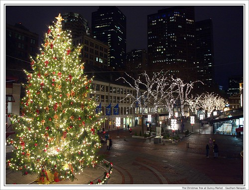 The Christmas Tree at Quincy Market | Gautham Narayan | Flickr