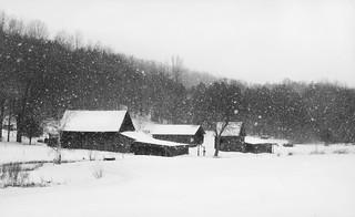 Snow Farm | by KJS Photos