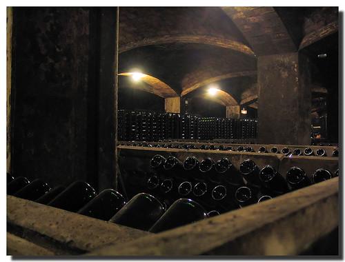 Secondary fermentation / Segunda fermentación | by SantiMB.Photos