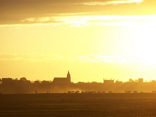 light sunset sky sun yellow madagascar malaza zébus whensunsets personalbestourfavoritephotos