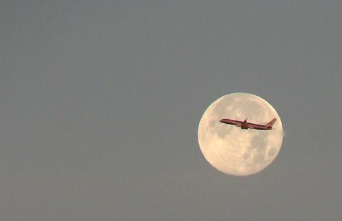 california moon plane sunrise airplane interesting fv5 full fullmoon explore fv10 blogged lax manhattanbeach americanairlines aa moonset dsch1 blueribbonwinner interestingness254 i500 abigfave anawesomeshot