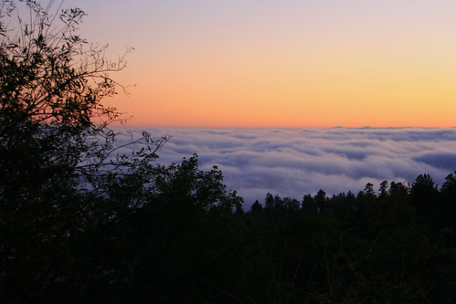 california trees sunset mountain silhouette clouds forest highway san national 18 bernardino onlythebestare