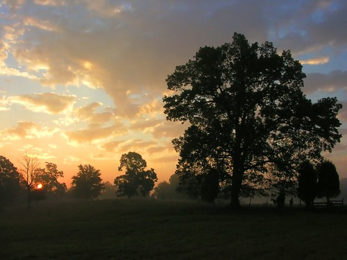 morning mist sunrise northcarolina