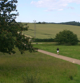 Runner to Downters Wood Ickworth Park Suffolk
