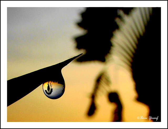 #35/08  Sunrise in Droplet